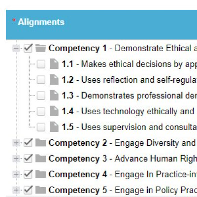 social_work_competencies